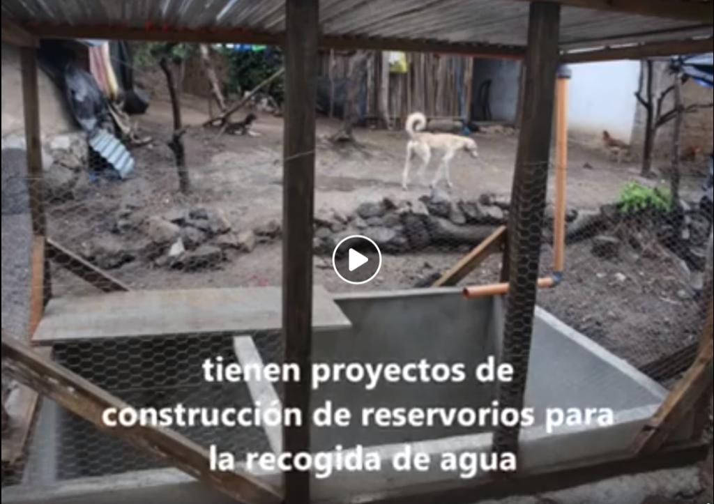 Chiquimula: Tala de árboles genera escasez de agua